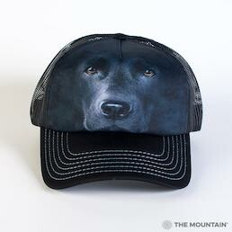 Adult Unisex Hats Dog Collection