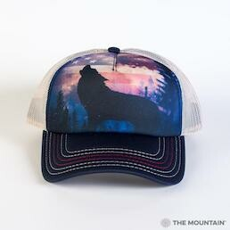 Adult Unisex Hats Americana Collection